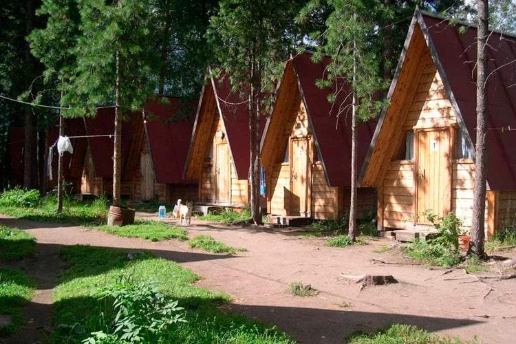 Карагай (gdealtai.ru)