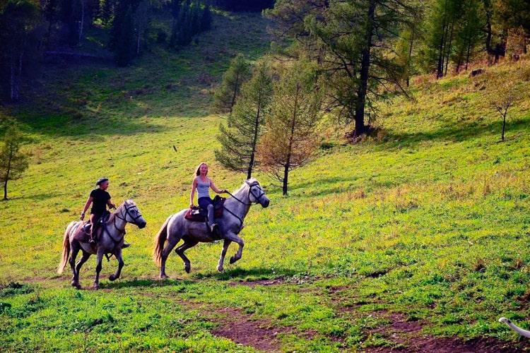 конная экскурсия