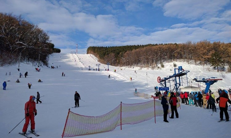Зимний отдых на Алтае