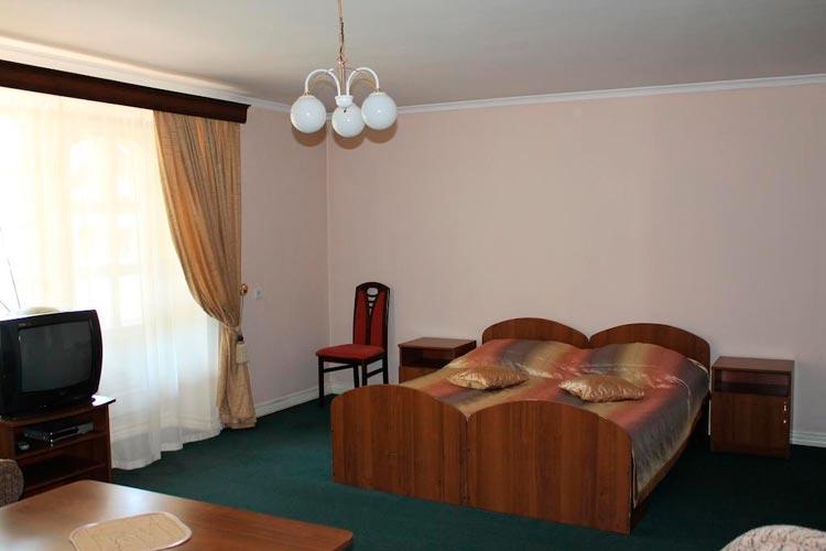 Номер в отеле Рыжий Пес (gdealtai.ru)