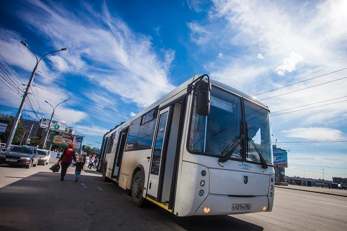 автобус из Новосибирска