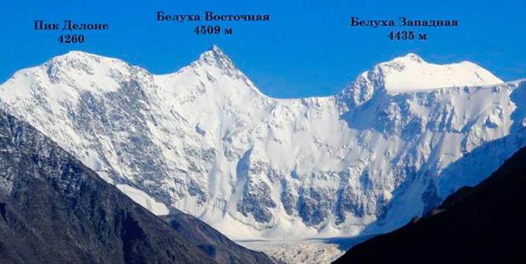 высота алтайских гор