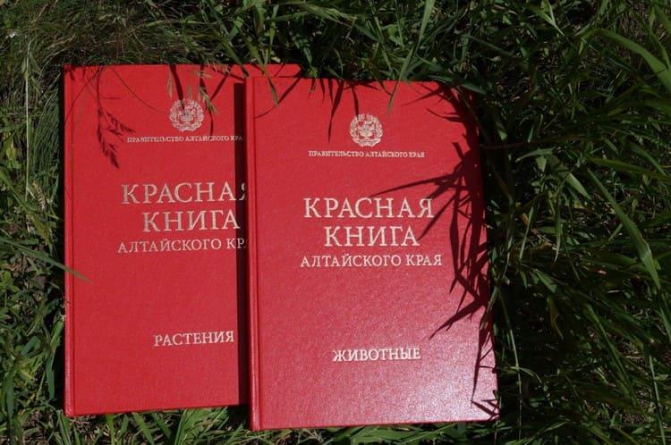 красная книга Алтая
