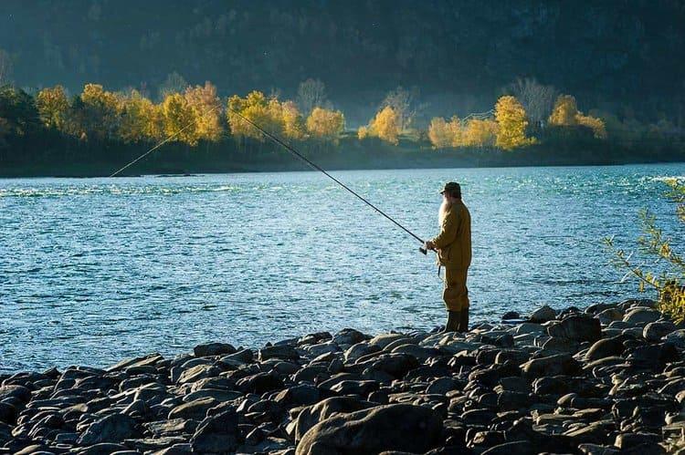 рыбалка катунь